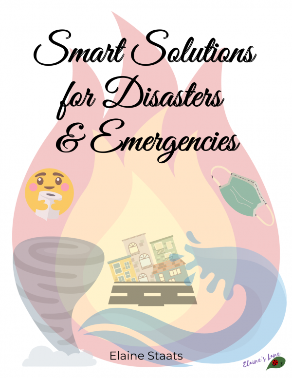 cover page for a book showing disasters